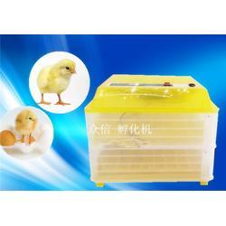 怀化孵化机,全自动孵化机,众信孵化设备(优质商家)图片