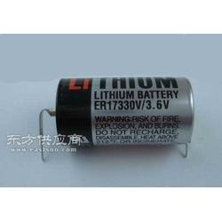 供应TOSHIBA东芝ER17330V电池图片