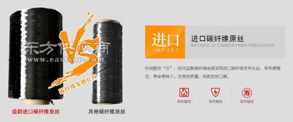 碳纤维电地暖耗电量_安徽碳纤维电地暖_阳光益群(查看)图片