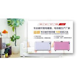 碳纤维电暖器、江苏电暖器、阳光益群(查看)图片