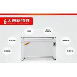 碳纤维电暖器品牌,辽宁电暖器,阳光益群(查看)图片