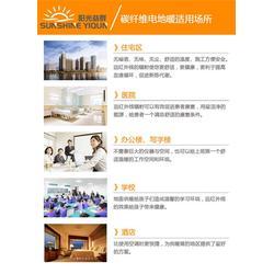 碳纤维电地暖_陕西电地暖_阳光益群(图)图片