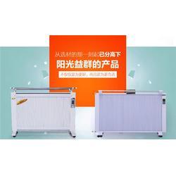 上海碳纤维电暖器,阳光益群,新款碳纤维电暖器图片