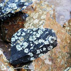 洛阳牡丹石哪里有卖、振飞牡丹石天然礼品(已认证)、牡丹石图片