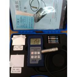 两用涂层测厚仪DR380图片