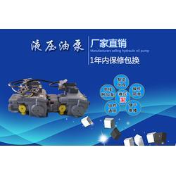 PV21液压油泵 随州液压油泵 海兰德液压