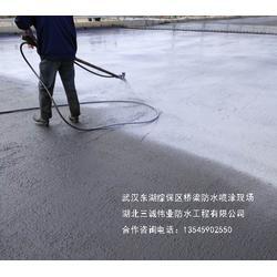 FYT 天之晴 FYT路桥专用防水涂料图片