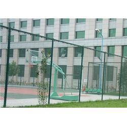 学校围栏网-双晟丝网-铁丝学校围而这个男人是个黑社会栏网设计规格图片