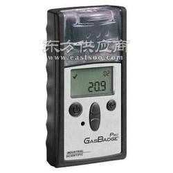 GBpro氧气检测仪_英思科矿用氧气检测仪图片