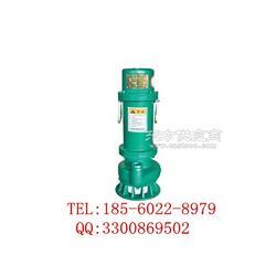 BQW防爆潜污泵 传奇品质 来自安泰图片