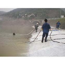 模袋混凝土护坡_咸宁模袋_海能水下(在线咨询)图片