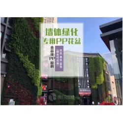 朗汀园林植物墙工程案例 立体绿化植物墙花盆厂家图片