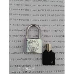 电力表箱挂锁30梅花合金锁图片