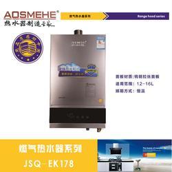 澄城燃气热水器订购|艾欧史密斯厨电(在线咨询)|燃气热水器图片