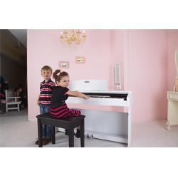 请问电钢琴哪个牌子好,珠江艾茉森,扬州电钢琴哪个牌子好图片