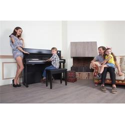 珠江艾茉森(图)|重锤电钢琴哪个牌子好|电钢琴哪个牌子好图片