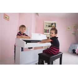 珠江艾茉森(图)|学数码钢琴的窍门?|泸州数码钢琴图片