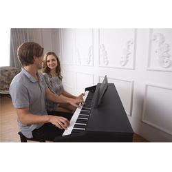 珠江艾茉森(图)|国产电钢琴哪个牌子好|大连电钢琴哪个牌子好图片