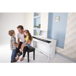 珠江艾茉森,智能电钢琴哪个牌子好,四会电钢琴哪个牌子好图片