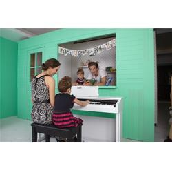 内江电钢琴哪个牌子好_智能电钢琴哪个牌子好_珠江艾茉森图片