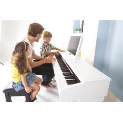 雅安电钢琴哪个牌子好 请问电钢琴哪个牌子好 珠江艾茉森图片
