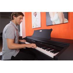 宿迁电钢琴哪个牌子好-小孩学电钢琴哪个牌子好-珠江艾茉森图片