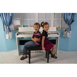 小孩学电钢琴哪个牌子好、北京电钢琴哪个牌子好、珠江艾茉森图片