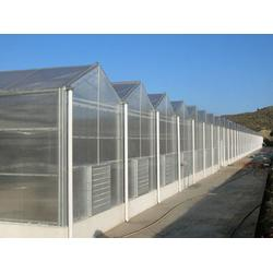 绿大地温室园艺(图)、连栋智能温室造价、邯郸智能温室图片