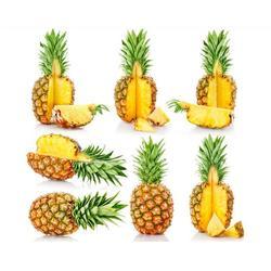 菠萝出售|济宁菠萝|鹏瑞农业开发图片