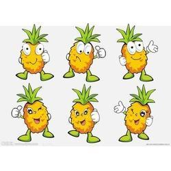 菠萝怎么吃,鹏瑞农业开发(在线咨询),北京菠萝图片
