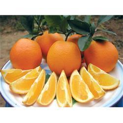 鹏瑞农业开发(图)_脐橙好_北京脐橙图片