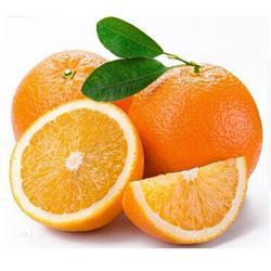 鹏瑞农业开发(图),脐橙价,海南脐橙图片