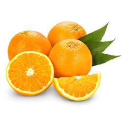 鹏瑞农业开发、脐橙销售、宁波脐橙图片