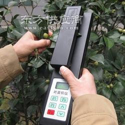 TYS-A叶绿素仪在雷竹叶绿素与高光谱植被指数关系探讨中的应用图片