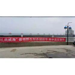 鲜海参养殖_威海德明海珍品公司(在线咨询)_海参养殖图片