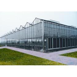 宇瑞温室工程(图)_阳光板温室建造_济南阳光板温室图片