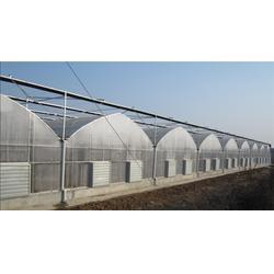 宇瑞温室工程 优质阳光板温室-滨州阳光板温室图片