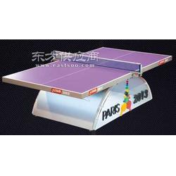 红双喜彩虹13乒乓球台 标准比赛专用球台图片