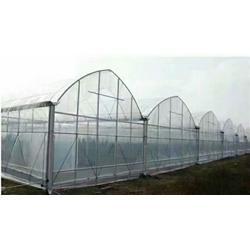 温室连栋大棚建设公司-腾达农业(在线咨询)河南温室连栋大棚图片