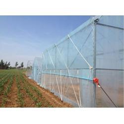 连栋大棚工程|腾达农业(在线咨询)|廊坊连栋大棚图片