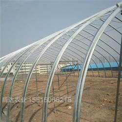 腾达农业(图),几字钢温室工程,焦作几字钢温室图片