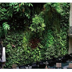 众诚仿真植物,高仿仿真植物墙,仿真植物墙图片