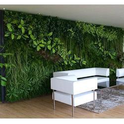 众诚仿真植物,植物墙厂家,东莞植物墙图片