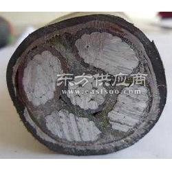 YJLV22 高压铝芯交联聚乙烯绝缘聚氯乙烯护套双钢带铠装电力电缆图片