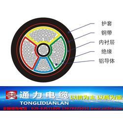 崇信县YJV-国标YJV电缆-通力电缆厂(优质商家)图片