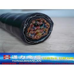 计算机电缆国标_通力电缆厂_乌审旗计算机电缆图片