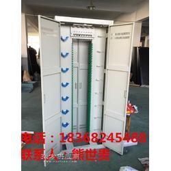 安装648芯光纤配线架 柜图片