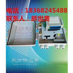 抱杆式1分16分光箱光纤分纤箱图片