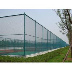 体育场铁丝网-体育场铁丝网高度-小学体育场铁丝网(优质商家)图片
