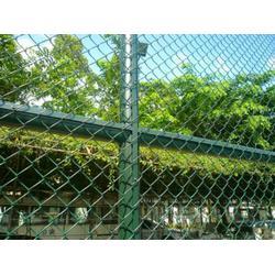 学校体育场围网 航拓丝网 体育场围网图片